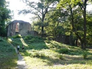 Az egykori pálos kolostor romjai Salföld közelében
